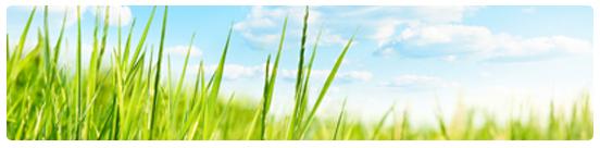 gchd_environmentalhealth